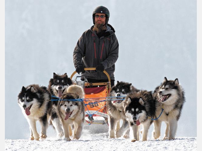 'Es war ein tolles Wochenende': Kilyan Klotsch mit seinen Alaskan Malamutes auf der Strecke. Foto Bittner