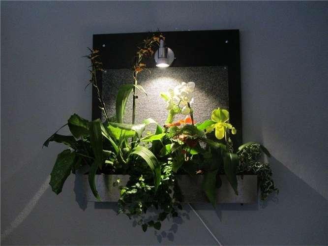 tropengarten an der wohnzimmerwand bad aibling. Black Bedroom Furniture Sets. Home Design Ideas