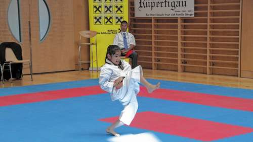 Bestes deutsches Karate-Team