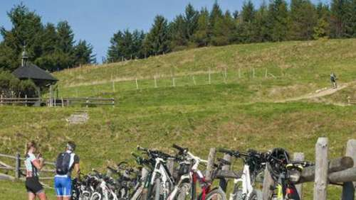 Mountainbiker stressen Alpenverein