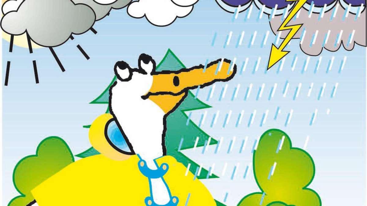 Wetter 63906